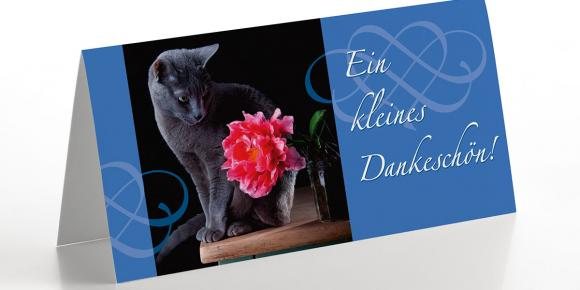 Grußkarte Katze ´´´´Danke Schön´´´´